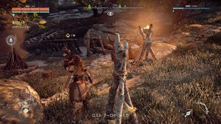 Horizon Zero Dawn™_ Complete Edition_20190903225604.jpg